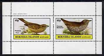 Bernera 1982 Birds #48 perf set of 2 values unmounted mint
