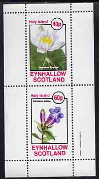 Eynhallow 1982 Flowers #31 perf set of 2 values unmounted mint