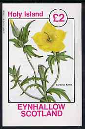 Eynhallow 1982 Flowers #31 imperf deluxe sheet (�2 value) unmounted mint