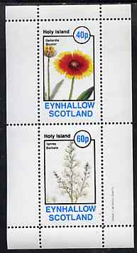 Eynhallow 1982 Flowers #32 perf set of 2 values unmounted mint