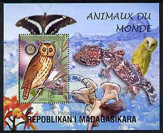 Madagascar 1999 Animals of the World #07 perf m/sheet showing Owl (Hanka) with Rotary Logo, background shows Owl, Butterfly, Reptile, Fungi & Orchid, fine cto used
