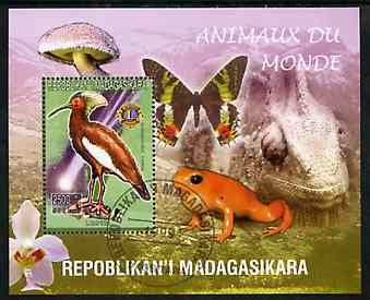 Madagascar 1999 Animals of the World #18 perf m/sheet showing Lampira with Lions Int Logo, background shows Frog, Butterfly, Reptile, Fungi & Orchid, fine cto used