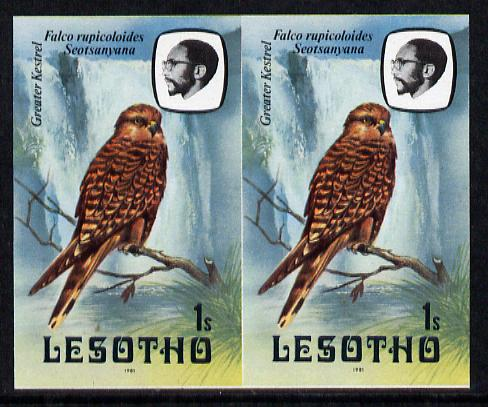 Lesotho 1981 Kestrel 1s def in unmounted mint imperf pair* (SG 437)