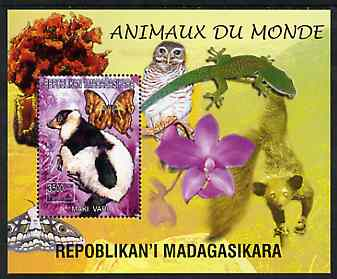 Madagascar 1999 Animals of the World #08 perf m/sheet showing Lemur #2, background shows Owl, Butterfly, Lizard & Orchid, unmounted mint