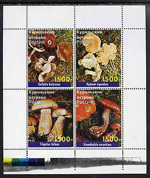 Kuril Islands 1999 ? Fungi perf sheetlet containing 4 values unmounted mint