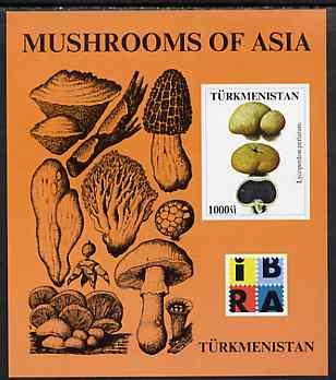 Turkmenistan 1999 Mushrooms of Asia #1 imperf m/sheet with IBRA imprint unmounted mint