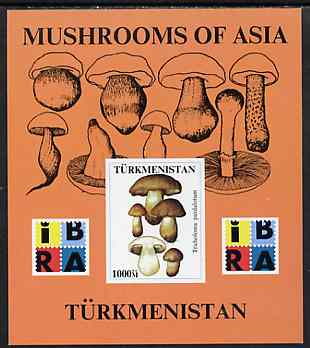 Turkmenistan 1999 Mushrooms of Asia #2 imperf m/sheet with IBRA imprint unmounted mint