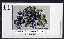 Eynhallow 1982 Fruit (Blackcurrants) imperf souvenir sheet (�1 value) unmounted mint