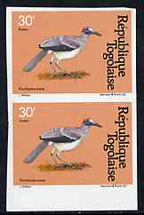 Togo 1981 Bald Crow 30f imperf pair from Birds set unmounted mint, as SG 1529