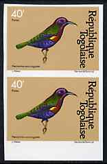 Togo 1981 Sunbird 40f imperf pair from Birds set unmounted mint, as SG 1530