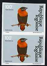 Togo 1981 Red Bishop 100f imperf pair from Birds set unmounted mint, as SG 1534, stamps on birds, stamps on