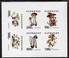 Kalmikia Republic 1998 Fungi imperf sheetlet containing complete set of 6 values unmounted mint