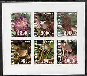 Kalmikia Republic 1998 Birds imperf sheetlet containing complete set of 6 values unmounted mint
