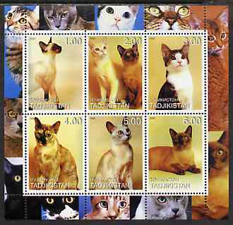 Tadjikistan 2000 Domestic Cats #1 perf sheetlet containing 6 values unmounted mint (vertical format)