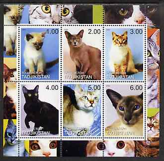 Tadjikistan 2000 Domestic Cats #2 perf sheetlet containing 6 values unmounted mint (vertical format)