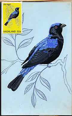 Nagaland 1969 Blue-Backed Fairy Bluebird - original hand-painted artwork as used for 50c (except branch outline has been changed) on board 110 mm x 180 mm complete with i...