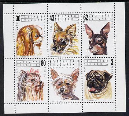 Bulgaria 1991 Dogs sheetlet containing set of 6 unmounted mint, SG 3784-89 (Mi 3929-34)