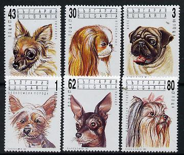 Bulgaria 1991 Dogs set of 6 unmounted mint, SG 3784-89 (Mi 3929-34)*