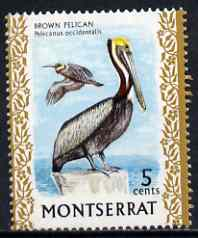 Montserrat 1970-74 Brown Pelican 5c on chalky paper unmounted mint, SG 246