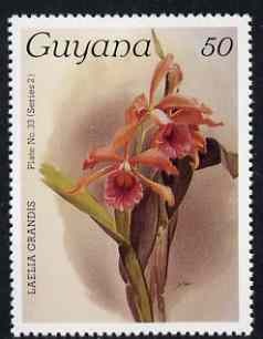 Guyana 1985-89 Orchids Series 2 plate 33 (Sanders' Reichenbachia) 50c unmounted mint, SG 1873