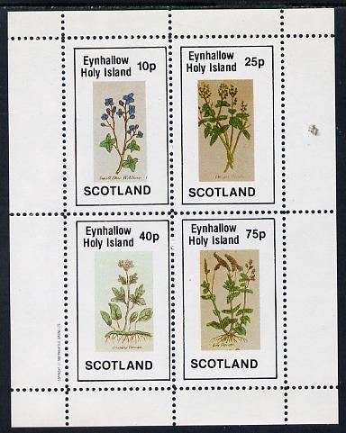 Eynhallow 1982 Wild Flowers perf sheetlet containing set of 4 values unmounted mint