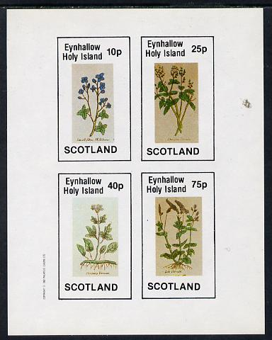 Eynhallow 1982 Wild Flowers imperf sheetlet containing set of 4 values unmounted mint