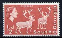 Falkland Islands Dependencies - South Georgia 1970 Reindeer 1/2d with sideways watermark unmounted mint, SG 17
