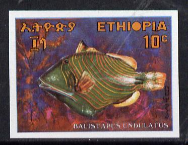 Ethiopia 1970 Triggerfish 10c imperf, as SG 752*
