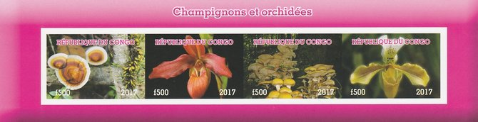 Congo 2017 Fungi & Orchids imperf sheetlet containing 4 values unmounted mint. Note this item is privately produced and is offered purely on its thematic appeal