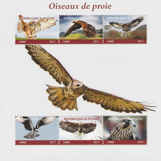 Chad 2017 Birds of Prey perf sheetlet containing 6 values unmounted mint. Note this item is privately produced and is offered purely on its thematic appeal. .