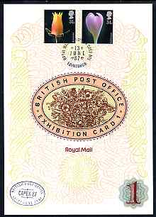 Great Britain 1987 Flower Photographs, the 31p & 34p values on Royal Mail Exhibition Card No.1 cancelled 13 June in Edinburgh plus special CAPEX cancellation with English text.