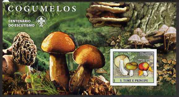 St Thomas & Prince Islands 2007 Fungi large imperf s/sheet containing 1 value (Scout logo in background) unmounted mint