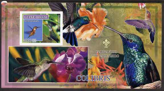 Guinea - Bissau 2007 Birds - Hummingbirds large imperf s/sheet containing 1 value (Scout logo in background) unmounted mint