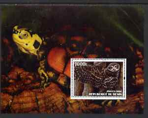 Benin 2004 Owls & Tortoises perf s/sheet #1 fine cto used