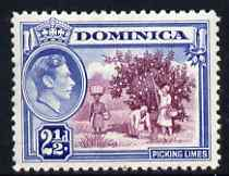 Dominica 1938-47 KG6 2.5d Picking Limes fine unmounted mint SG103a