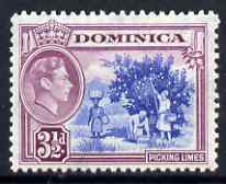 Dominica 1938-47 KG6 3.5d Picking Limes fine unmounted mint SG104a