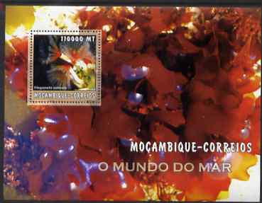 Mozambique 2002 Sea Weed perf s/sheet containing 1 value unmounted mint Yv 144
