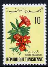 Tunisia 1968 Pomegranate 10m unmounted mint, SG 665