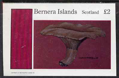 Bernera 1983 Fungi (Chantarelle) imperf deluxe sheet (�2 value) unmounted mint