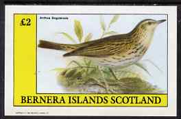 Bernera 1983 Pipit (Anthus bogotensis) imperf deluxe sheet (�2 value) unmounted mint