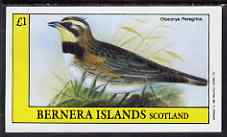 Bernera 1983 Otocorys peregrina imperf souvenir sheet (�1 value) unmounted mint, stamps on birds