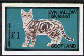 Eynhallow 1983 Domestic Cats imperf souvenir sheet (�1 value - American Short Hair) unmounted mint