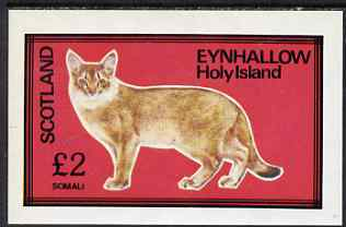 Eynhallow 1983 Domestic Cats imperf deluxe sheet (�2 value - Somali) unmounted mint. Note this item is privately produced and is offered purely on its thematic appeal