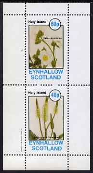 Eynhallow 1982 Flowers #33 perf set of 2 values unmounted mint