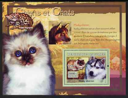 Guinea - Conakry 2007 Cats & Dogs perf souvenir sheet #3 unmounted mint Yv 530