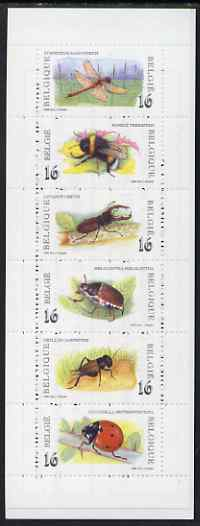 Booklet - Belgium 1996 150th Anniversary of Royal Institute of Natural Sciences with pane of 6 insects, SG SB59