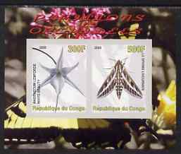 Congo 2008 Butterflies & Orchids #1 imperf sheetlet containing 2 values unmounted mint