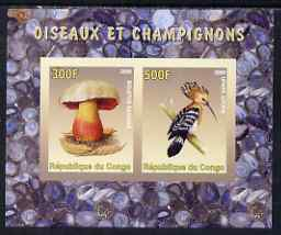 Congo 2008 Birds & Mushrooms #1 imperf sheetlet containing 2 values unmounted mint