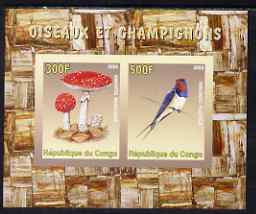 Congo 2008 Birds & Mushrooms #2 imperf sheetlet containing 2 values unmounted mint