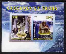 Congo 2008 Waterfalls & Animals (Zebra & Monkey) imperf sheetlet containing 2 values unmounted mint